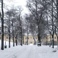 Tänään klo 13.00 on mahdollisuus päästä tutustumaan Lapinlahden puistoon etänä. ...